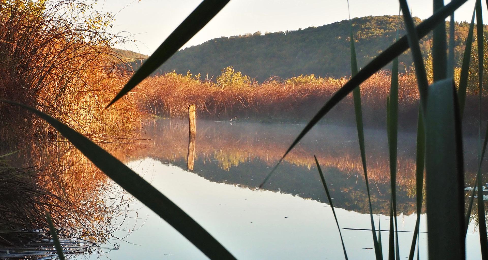 Schmiechener See